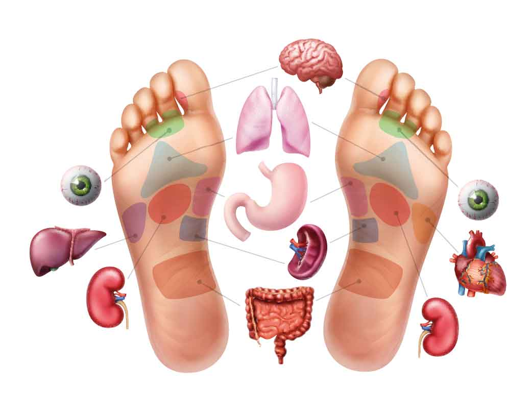 Fußreflexzonen Physiotherapie - Die Füße sind eine Miniaturlandkarte des gesamten menschlichen Körpers